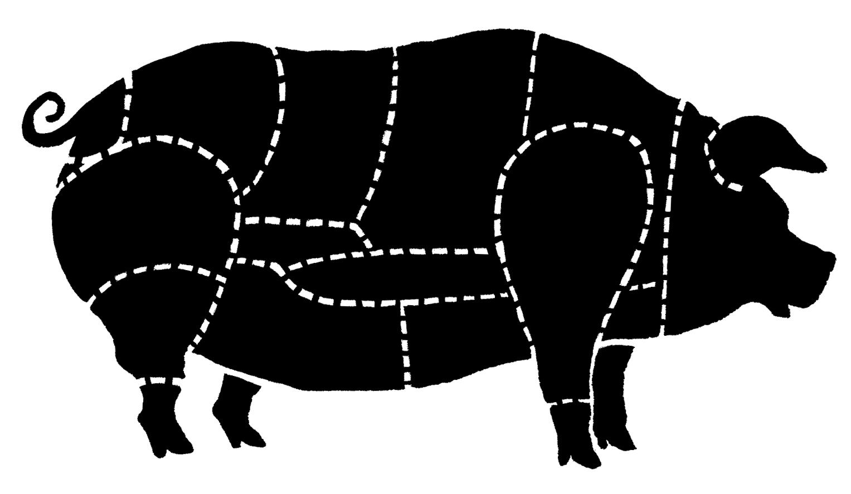 cochon web